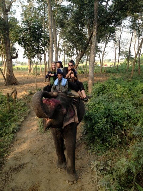 We went for another jungle safari. This time on an elephant!