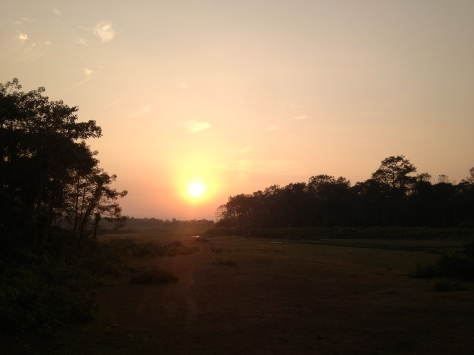 sunset from elephant / side of the jungle