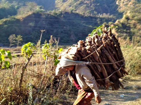 Carrying the firewood, Bhulbhule - Ngadi. A Nepali classic.
