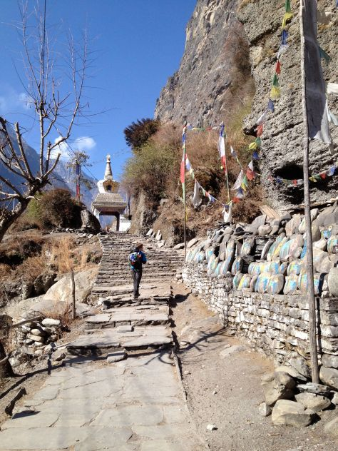 Prayer flags and a stupa