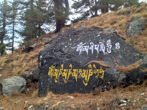 After Bragha we continued to Milerepa's cave which is one of the most importent buddhist pilgramage sights. On the way there were lots of stones with Tibetan writings on them.