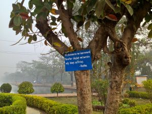 Everywhere these signs with the wisdoms and preachings of Buddha were to be found.
