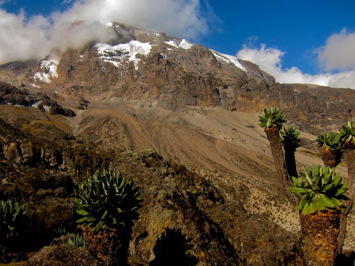 Day 5: Baranko – Karanga (4046 m) – Barafu (4600 m)