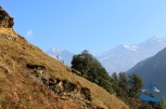 Beautiful Rukum nature, with our guide Mr. Bharat Sharma on the mountain side.