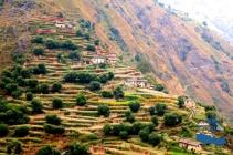 Beautiful rice terraces#1