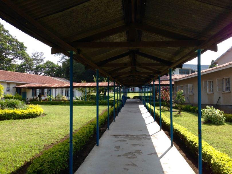Mount Meru Hospital